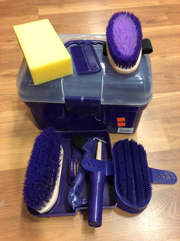 Purple Grooming Tote Box