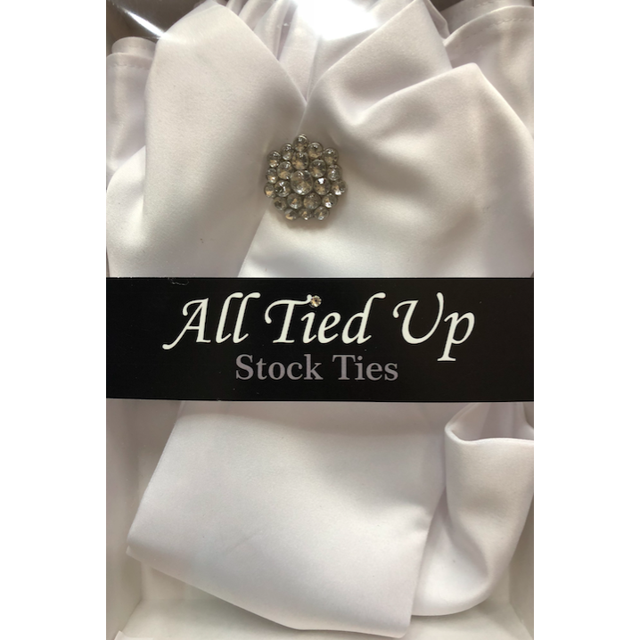 All Tied Up Stock Tie 52-1