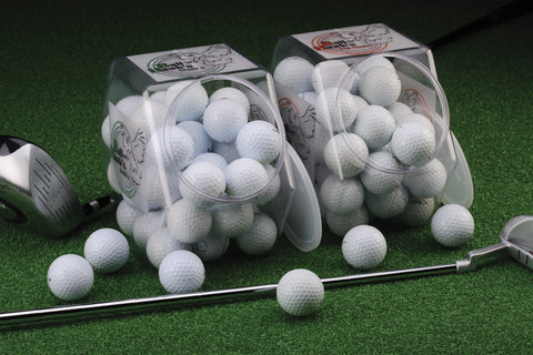 Ball Hawk Pro V1/Grade A Golf Balls