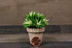 Clay Flowers Handmade Mini Succulent Green  Cute Hand Painted Flower