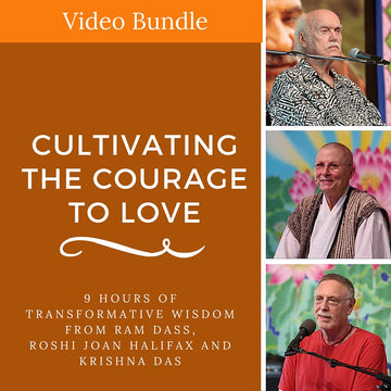 Cultivating the Courage to Love Bundle (VIDEO DOWNLOAD)