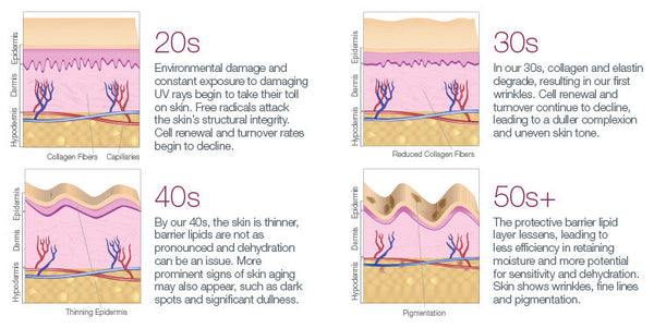 Biotechnology Advancements and Their Implications in the Cosmetic Industry: Part II – Skin Management System by Dr. Strauss