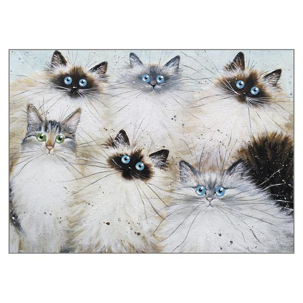 'Rita's Cats' Cat Greeting Card