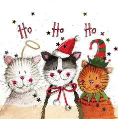 Ho Ho Ho Cats Sparkle Christmas Card