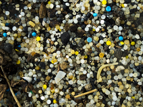 tiny round plastic pellets covering a beach on Padre Island, off the southern coast of Texas.