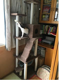 185cm Indoor Cat Tower Tree - DDhouse Singapore Online Pet Supplies and Pet Products - 7