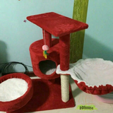 Ruby Red Colored Cat Scratcher With Hammock
