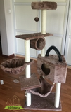 Cat Scratching Trees - DDhouse Singapore Online Pet Supplies and Pet Products - 2