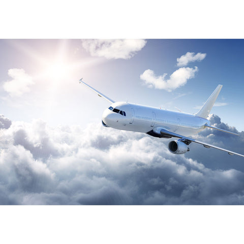 Airplane in the Sky Wall Mural