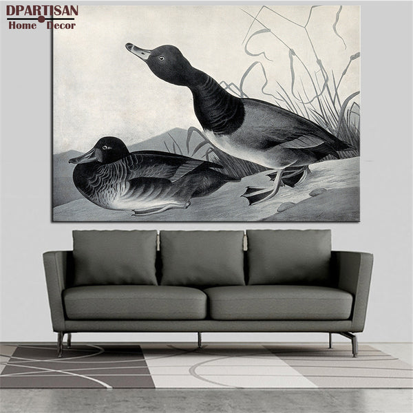 DPARTISAN  John James Audubon Two birds animal wall Art Canvas Prints No frame wall painting for home living rooms pictures