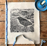 Rock Pipit, original lino cut print by Lou Tonkin