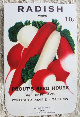 ANTIQUE Seed Packet Colorful Vegetables Suitable To Frame Cottage Chic Decor Scrapbooking Crafts Weddings Great Gift For Gardener