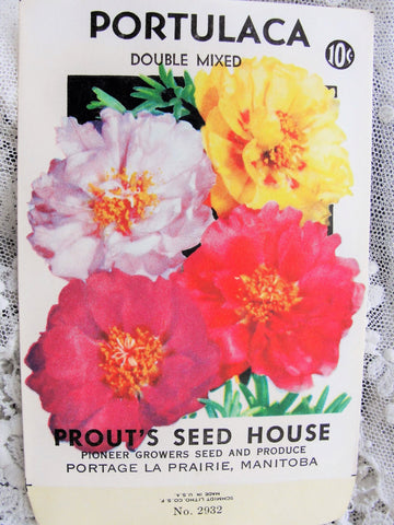 Vintage SEED PACKET Colorful Portulaca Flowers Suitable To Frame Cottage Chic Decor Scrapbooking Crafts Weddings Gifts
