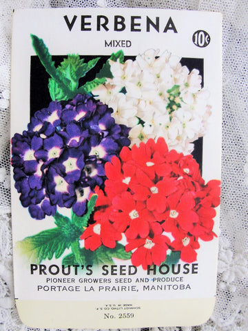Vintage SEED PACKET Colorful Verbena Flowers Suitable To Frame Cottage Chic Decor Scrapbooking Crafts Weddings Gifts