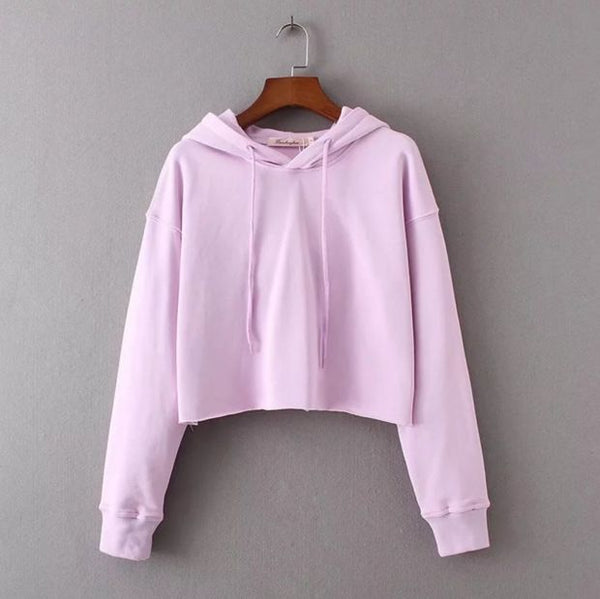 The New Fashion Women'S Autumn And Winter Short Paragraph Sweater Women Top