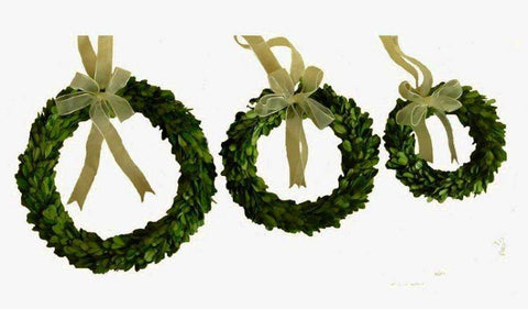Image of Mills Floral Preserved Boxwood Round Wreath Set with Ribbon Life on Plum