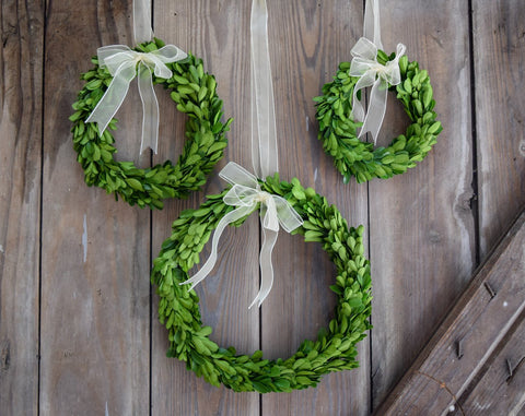 Image of Mills Floral Preserved Boxwood Round Wreath Set with Ribbon