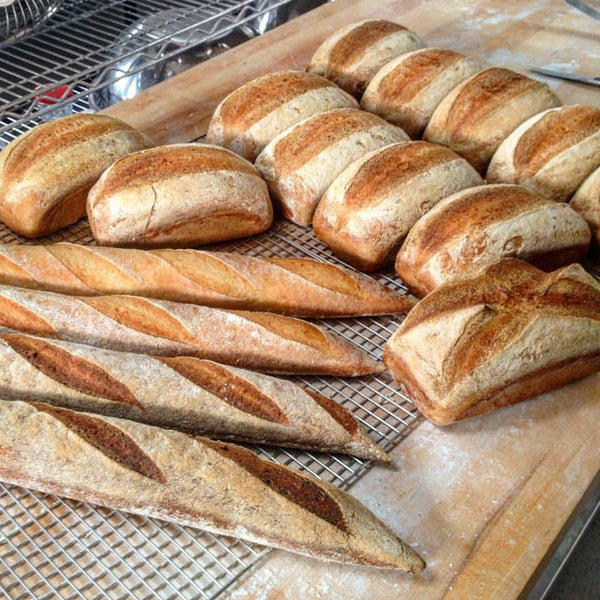Gluten-free Sourdough Breads and Bagels - ONLINE WORKSHOP JUNE 2019