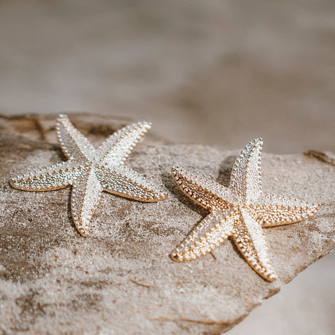 "The ""Star Fish"" Earring"
