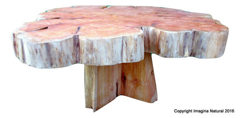 Large Cypress Handmade Tree Slice Slab Coffee Table - Rustic Chilean Log Table - Imagina Natural