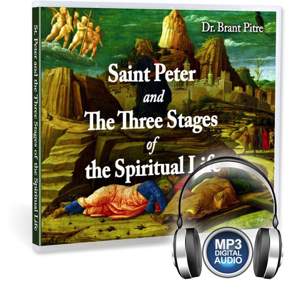 Learn what the three stages of the spiritual life are and how the Bible shows Peter going through each one in this impressive Bible study with Dr. Brant Pitre on MP3.