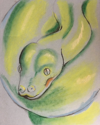 Pastel: The Green tree Python