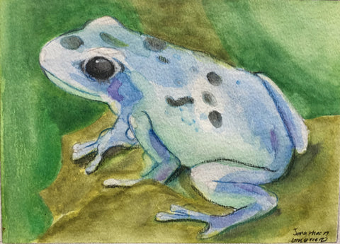 Watercolor: Poison Dart Frog