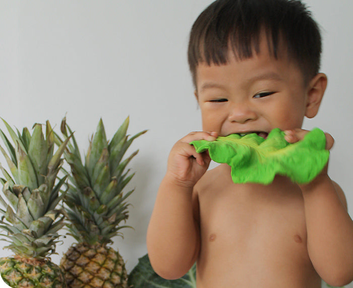 Kendall Kale Chewable Toy by Oli & Carol