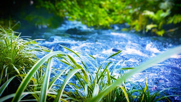 River Sleep Sounds Mp3 Relaxing White Noise