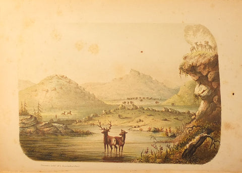 Charles Wilkins Webber (1819-1856), The Hunter-Naturalist. Romance of Sporting; or, Wild Scenes and Wild Hunters