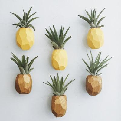 Pineapple Airplant Magnet {goodsmith}