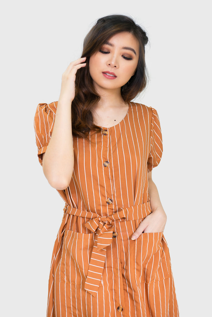 Brown button down lines skater dress