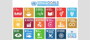 Green Banana Paper and UN Sustainable Development Goal 1