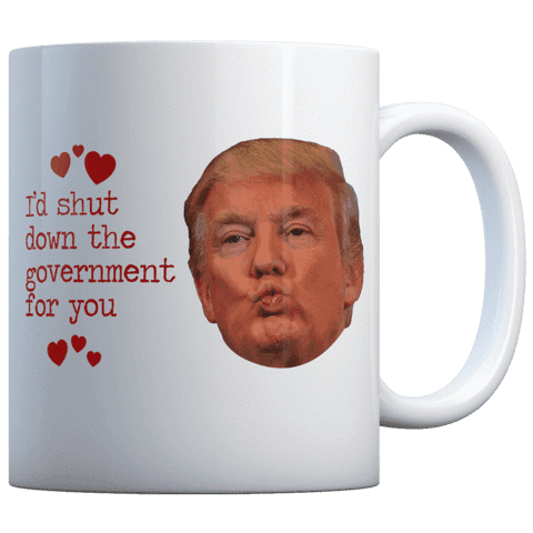 I'D SHUT THE GOVERNMENT FOR YOU KISS - COFFEE MUG
