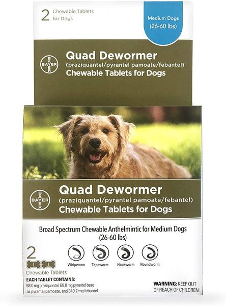 Bayer Quad Dewormer for Medium Dogs 26-60lbs (2 Chew Tabs) - Countryside Pet Supply