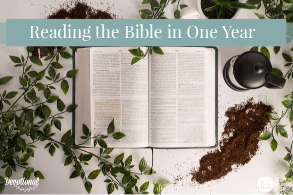 Reading the Bible in One Year