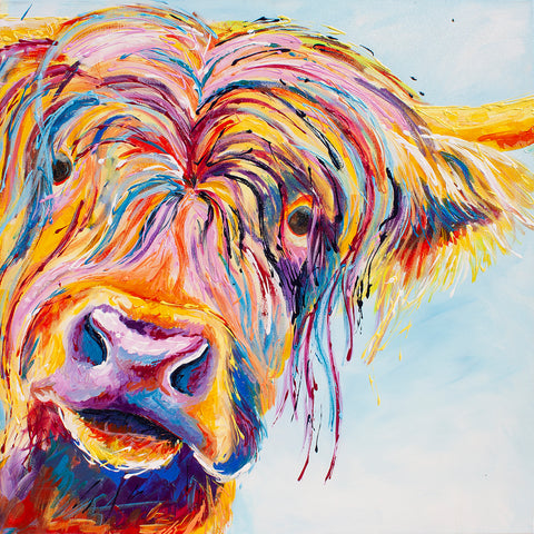 Canvas Print of Charter Highland Cow