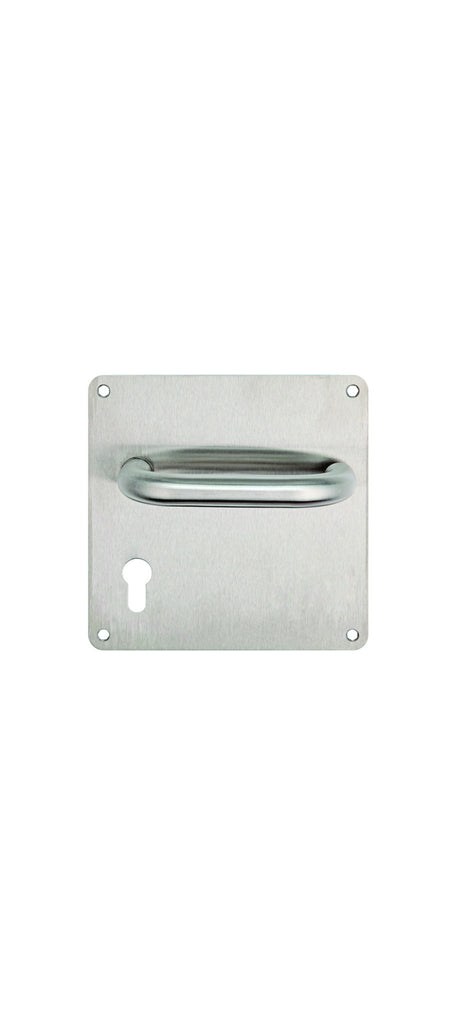 LATCH HANDLE TH120/BP STAINLESS STEEL (Dorma)