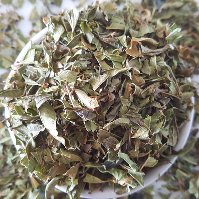 Lemon Verbena Tea, Herbal Tea Tea Life