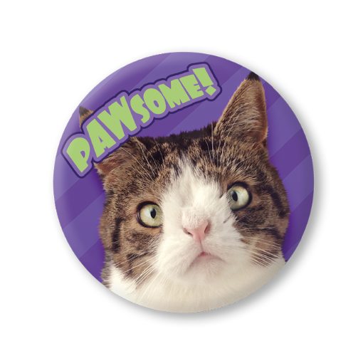 Monty Boy - Badge - Merchandise - Monty Boy