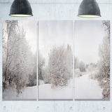 snow landscape with frosted trees landscape canvas print PT7231