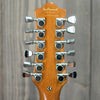 DeArmond S73 12-string w/ Gig Bag (Used - 2001)