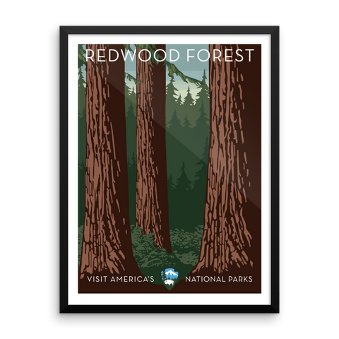 See America: Redwood Forest Print