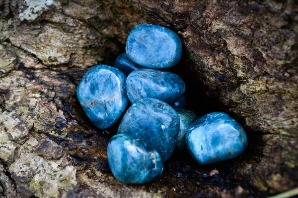 Blue Apatite~For Personal Power + Psychic Connection - Wild Witchery