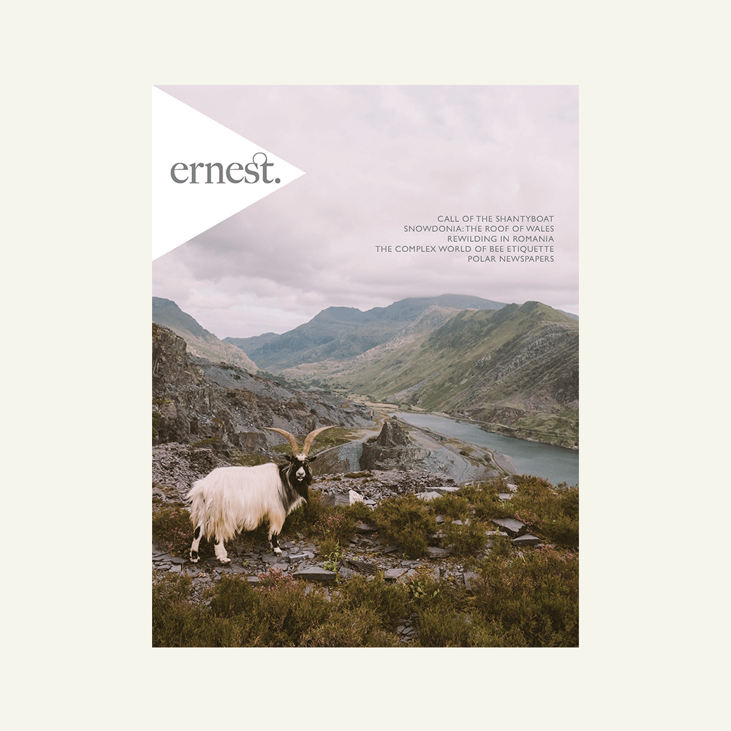 Ernest Journal | Issue 8
