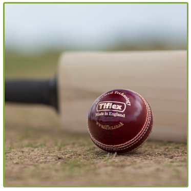 Cricket Balls - Men