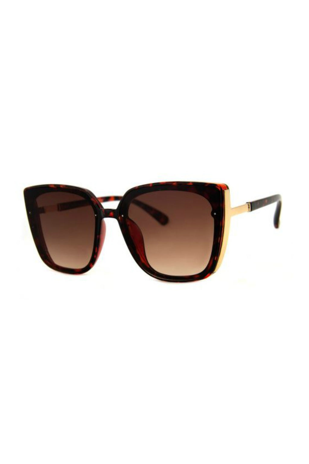 Face It Sunnies - Tortoise