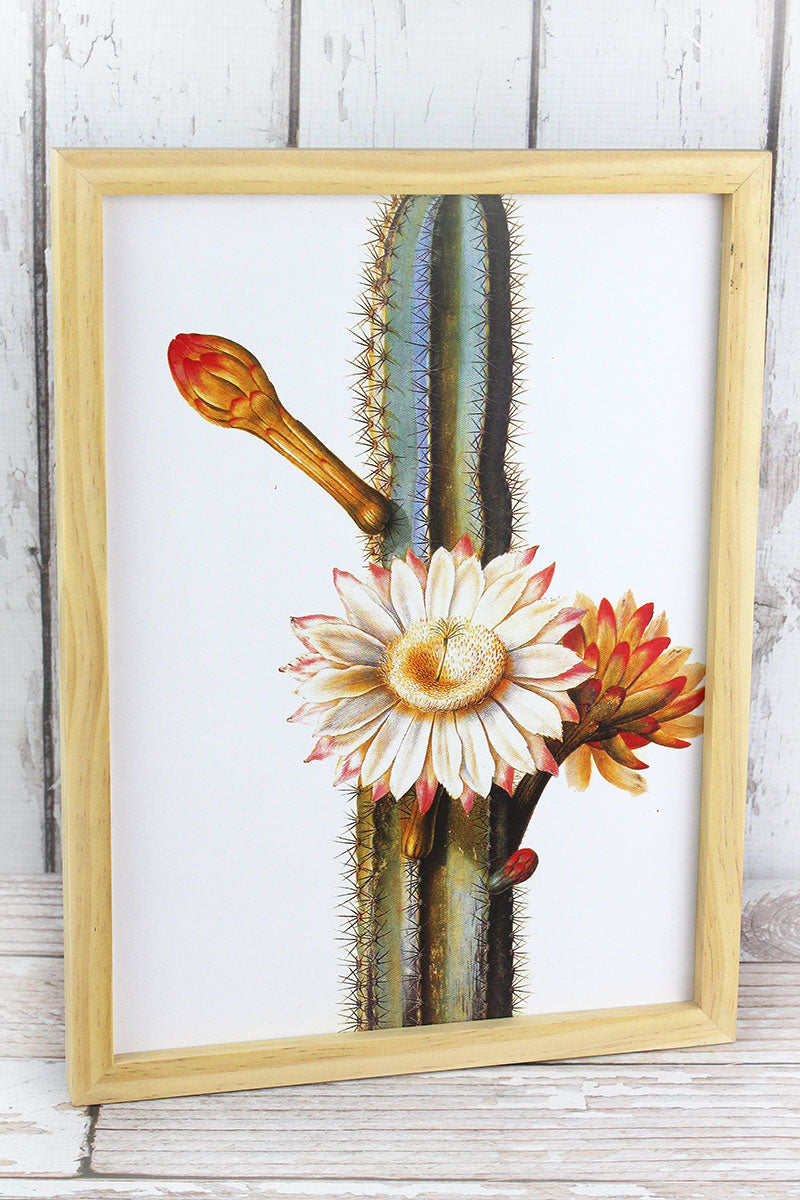 16 x 12 Flowering Cactus Wood Framed Art