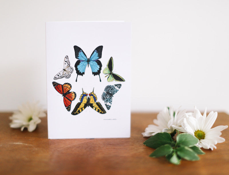 Butterfly Hexagon Thank You Card - Falling Leaf Card Co.