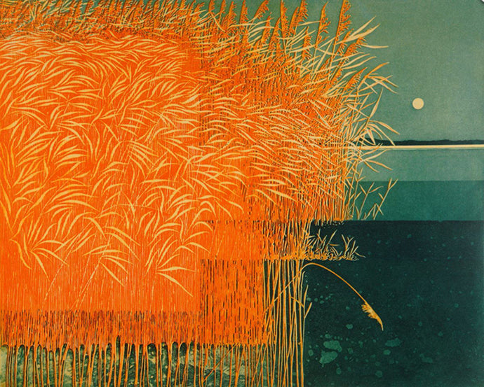 Reeds by Phil Greenwood